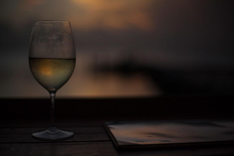 vinoflorida